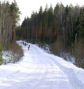 Дорога на Аять мимо Толстика